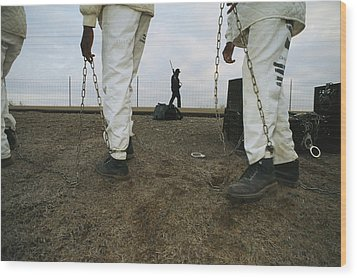 Chain Gang Prisoners Being Watched Wood Print by Bill Curtsinger