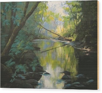 Champagne Creek Wood Print by Karen Ilari