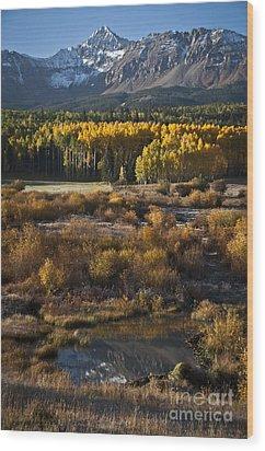 Changing Season Wood Print by Jeff Kolker