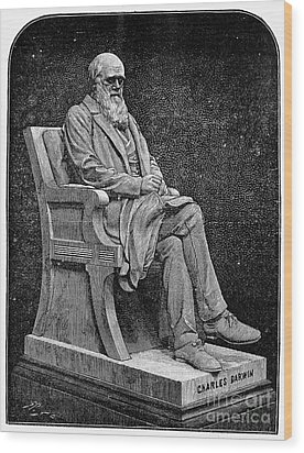 Charles Darwin (1809-1882) Wood Print by Granger