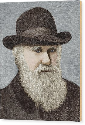 Charles Darwin, British Naturalist Wood Print by Sheila Terry