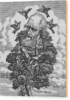 Charles Darwin In His Evolutionary Tree Wood Print by Bill Sanderson