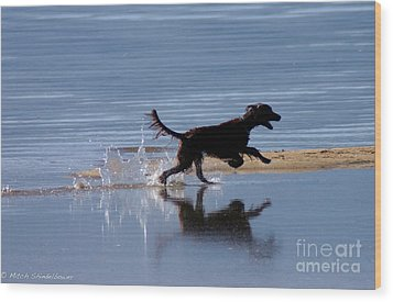 Wood Print featuring the photograph Chasing Reflections by Mitch Shindelbower