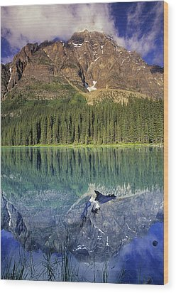 Chephren Lake And Mt. Chephren, Banff Wood Print by Darwin Wiggett