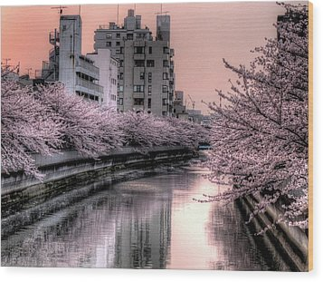 Cherry Blossom Wood Print by Akirat2011, All Right Reserved.