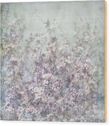 Cherry Blossom Grunge Wood Print by Paul Grand