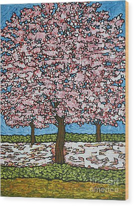 Cherry Blossom Trio Wood Print by Tracy Levesque