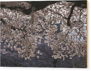Wood Print featuring the photograph Cherry Blossoms by Jerry Cahill