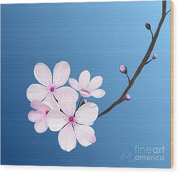 Cherry Blossoms Wood Print by Rand Herron