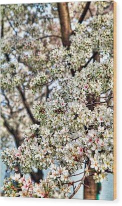 Cherry Blossoms Washington Dc 2 Wood Print by Metro DC Photography