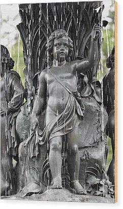 Wood Print featuring the photograph Cherub Bethesda Fountain 1 by Sarah McKoy