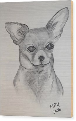 Wood Print featuring the drawing Chi Chi by Maria Urso