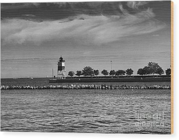 Chicago Lighthouse Wood Print by Leslie Leda