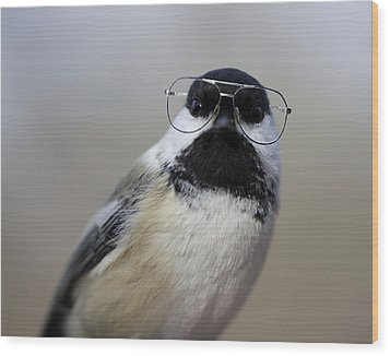 Chickadee Wearing Glasses Wood Print by Www.sharp-photo.com