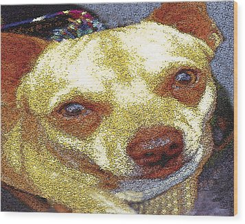 Chihuahua Wood Print by Alice Ramirez