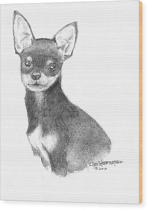 Wood Print featuring the drawing Chihuahua by Jim Hubbard
