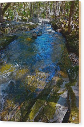 Childs Brook Wz 26 Wood Print by George Ramos