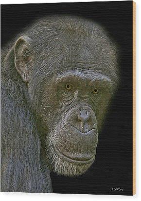 Chimpanzee Portrait Wood Print by Larry Linton