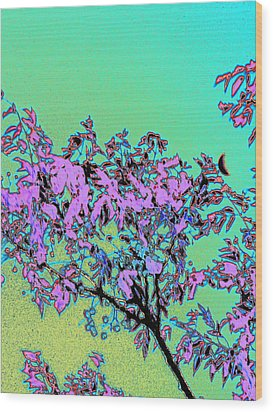 Chinaberry Moon Wood Print