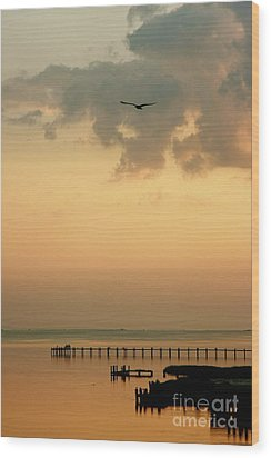 Wood Print featuring the photograph Chincoteaque Island by Nicola Fiscarelli