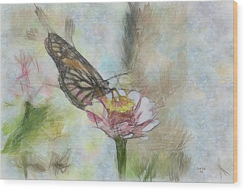 Chinese Butterfly Wood Print by Trish Tritz
