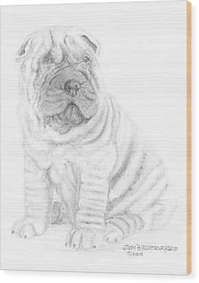 Wood Print featuring the drawing Chinese Shar-pei by Jim Hubbard