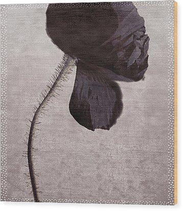 Chocolate Poppy Wood Print by Bonnie Bruno
