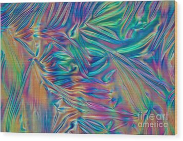 Cholesteric Liquid Crystals Wood Print by Michael Abbey and Photo Researchers