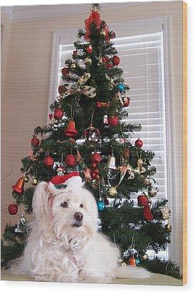 Christmas Card Dog Wood Print by Vijay Sharon Govender