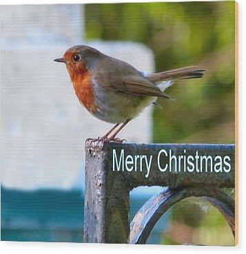 Christmas Robin Wood Print by Debra Collins