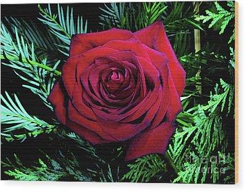 Christmas Rose Wood Print by Mariola Bitner