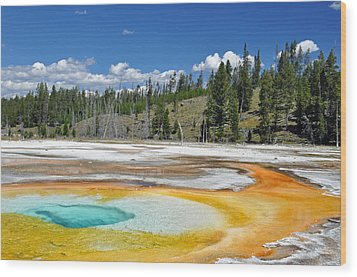 Chromatic Pool Yellowstone National Park Wood Print by Bruce Gourley