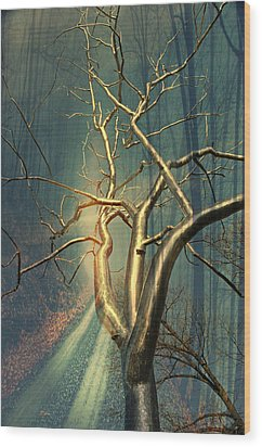 Chrome Forest Wood Print by Marty Koch
