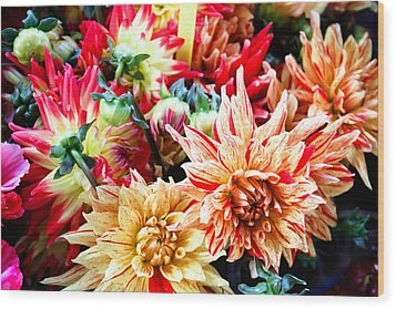 Chrysanthemum Blooms Wood Print by Tony Grider