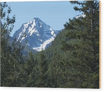 Chugach Mountain View Wood Print by George Hawkins