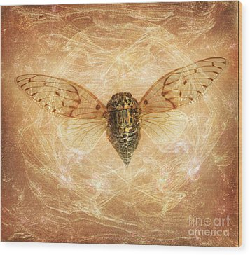 Cicada In Amber Wood Print by Janeen Wassink Searles