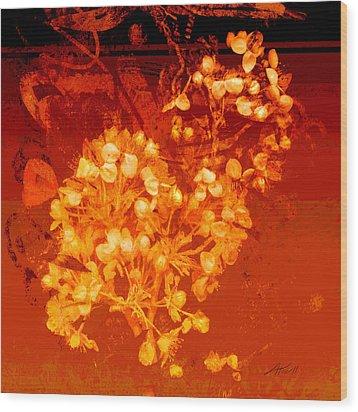 Cinnabar  Wood Print by Ann Powell