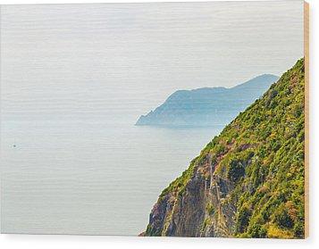 Cinque Terre Coastline Wood Print by Michal Krakowiak