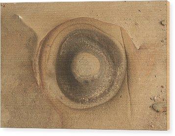 Circle Of Rock Wood Print