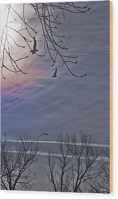 Circling Wood Print by Kat Besthorn