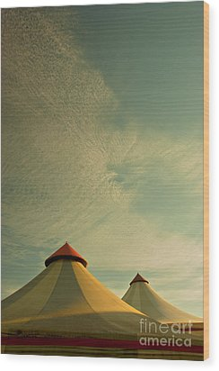 Circus Summers Wood Print by Paul Grand