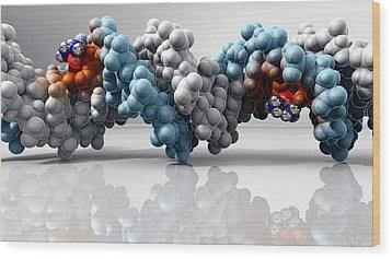 Cisplatin Cancer Drug And Dna Molecule Wood Print by Phantatomix