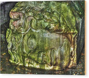 Cistern Medusa Wood Print by Michael Garyet