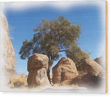 City Of Rocks State Park Wood Print by FeVa  Fotos
