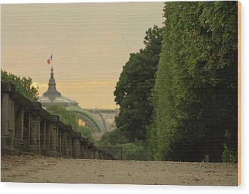 City Park Wood Print by Hamys