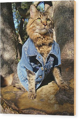 Wood Print featuring the photograph Classic Denim by Joann Biondi