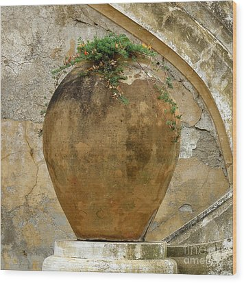 Wood Print featuring the photograph Clay Pot by Lainie Wrightson