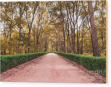 Clay Road In The National Park Wood Print by Mongkol Chakritthakool