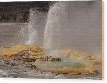 Clepsydra Geyser Yellowstone National Park Wood Print by Bruce Gourley