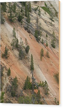 Wood Print featuring the photograph Cliff Side Grand Canyon Colors Vertical by Living Color Photography Lorraine Lynch